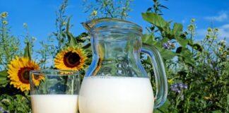 Mleko bogate w wapń i witaminę D3 ochroni przed osteoporozą